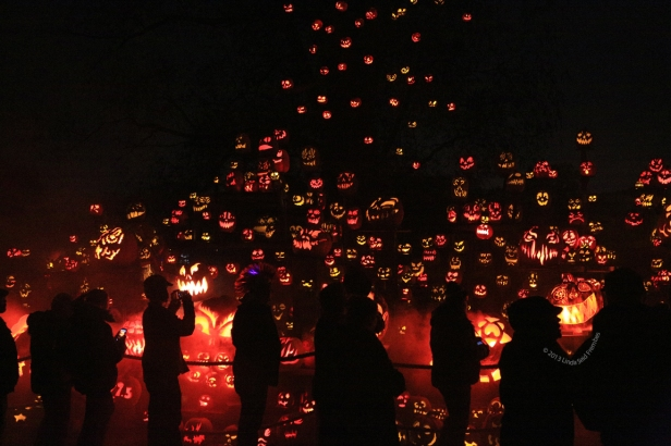 Jack-o-Lantern Spectacular crowds