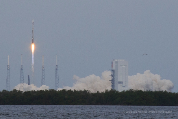 MAVEN launch