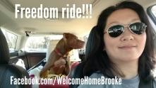 Brooke freedom ride