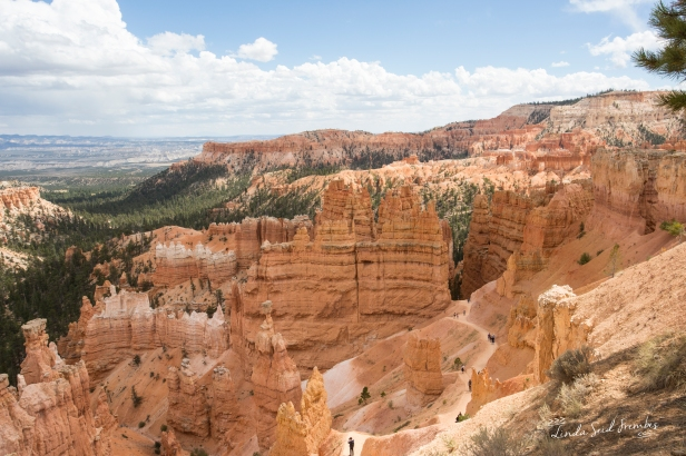 Navajo Loop Trail in Bryce Canyon.